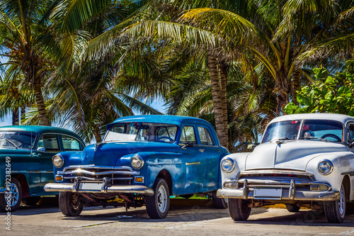 Amerykańscy klasyczni samochody parkują w linii pod drzewkami palmowymi w Varadero Kuba, HDR, serialu - Kuba reportażu