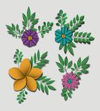 cute flowers set icons vector illustration design