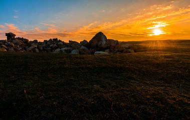 Sunny sunset in the savannah