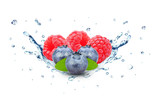blueberry and raspberry splash water isolated on the white