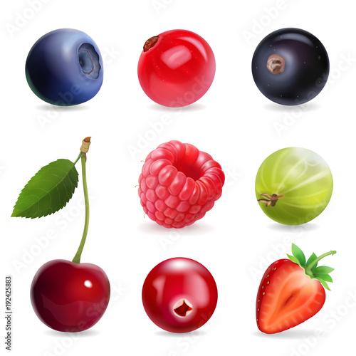 Sweet berries, vector illustration realistic set