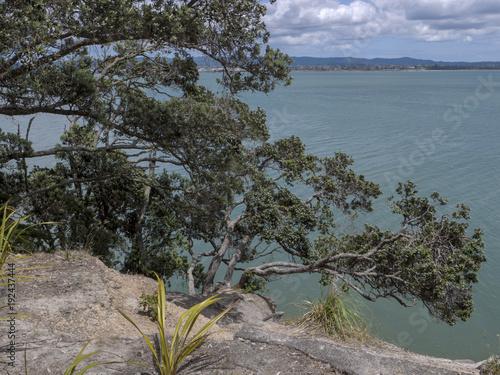 Deurstickers Grijze traf. Auckland New Zealand Chevalier Point