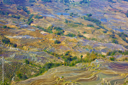 Keuken foto achterwand Rijstvelden Yunnan Yuanyang titian