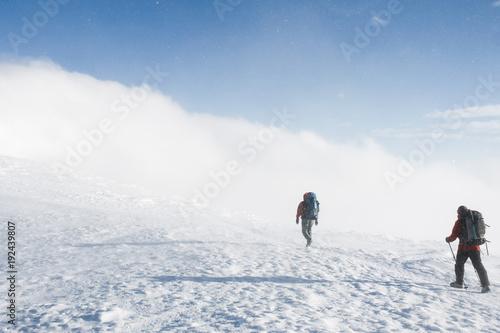 hikers walking on snowy mountains in winter in cloudy weather, Carpathian Mountains, Ukraine
