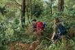 Walking in forest - 192461490