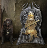 The cat king is sitting on an iron throne. The big dog is near him. - 192490476