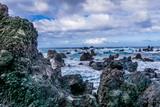 Bid Island Coast 6 - 192490855