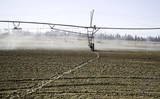 Sprinkler irrigation field - 192502813
