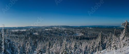 Foto op Plexiglas Panoramafoto s Winter Landscape Harz National Park