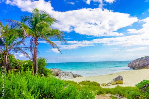 Amazing beautiful view of the beach with turquoise water, some palm trees and green vegetation in a gorgeos day with blue sky and white sand close to Mayan Ruins of Tulum. Riviera Maya, in Mexico