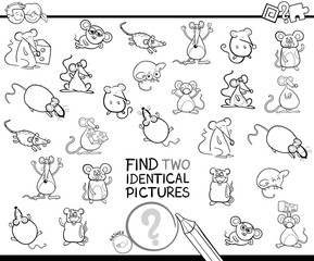 find two identical mice educational color book