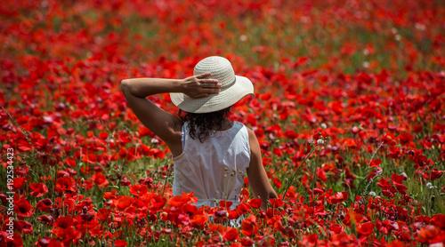 Foto op Canvas Rood paars Poppies field
