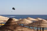 Beach sport, Egypt, Sharm El Sheikh - 192535027