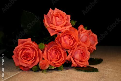 Foto Murales красивая розовая роза которая лежит на деревянных досках