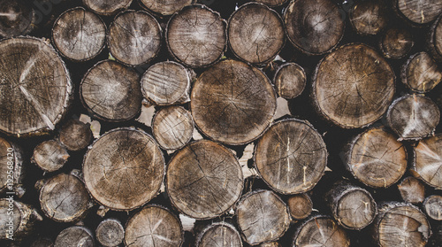 Papiers peints Texture de bois de chauffage wood, firewood, log, tree, texture, timber, stack, cut, pile,