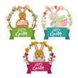 collection bunnies floral decoration frame happy easter vector illustration - 192577449