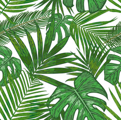 Vector  seamless pattern of  tropical palm leaves. beautiful foliage background of the areca, sago, howea, philodendron  in watercolor style