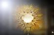 Quadro Ostensorial adoration in the catholic church