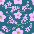 Seamless pattern from branches and cherry blossoms on a green background - 192620623