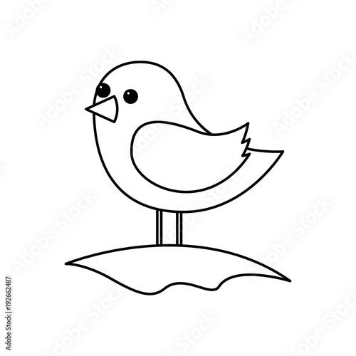 Fotobehang Boerderij cute bird standing in the field cartoon vector illustration outline image