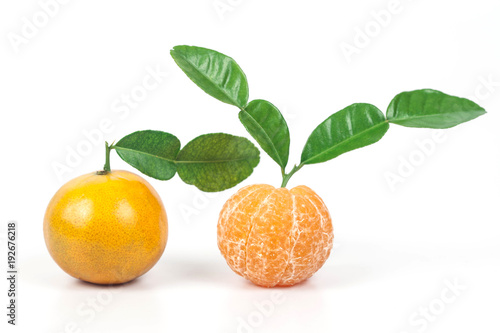 fresh oranges from tropical zone ,sweet fruit