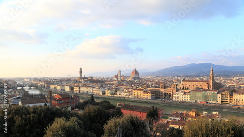 Poster Florence Skyline di Firenze