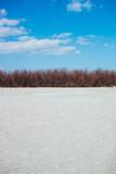 sabbia alberi e cielo azzurro