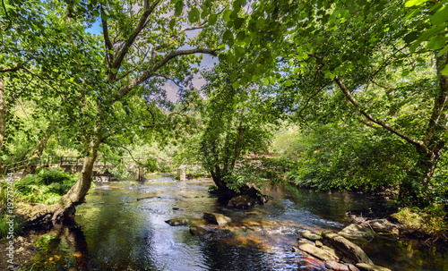 Keuken foto achterwand Rio de Janeiro View of the mountain river called Anllons with the riverbed full of stones and a small island with trees in the center. With banks covered with oaks, typically Atlantic forest in Galicia, Spain