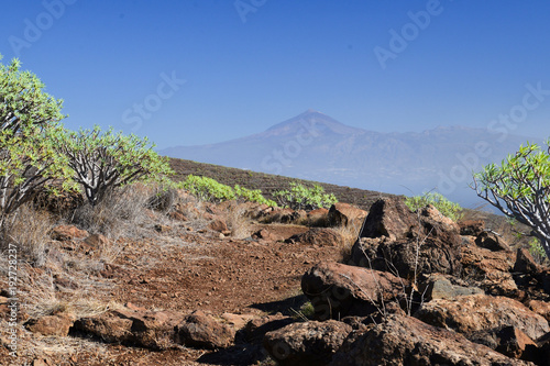 Fotobehang Cappuccino La Gomera: hike from Playa de Santiago to San Sebastian