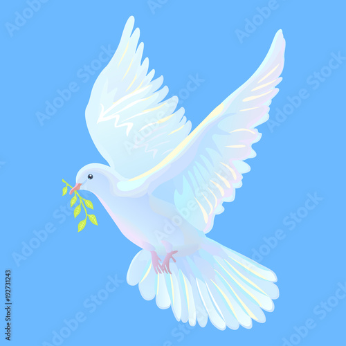 White Dove Is The Symbol Of A Peace Blue Sky Buy Photos Ap