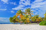 Palm trees on beautiful sandy exotic beach on Palm Island, Caribbean region of Lesser Antilles - 192743289