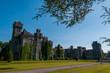Quadro Irlanda, Ashford Castle