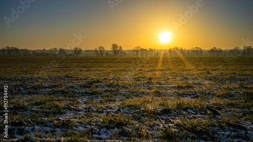 Papiers peints Morning Glory Wunderschönes SOnnenaufgang über einem verschneiten Feld
