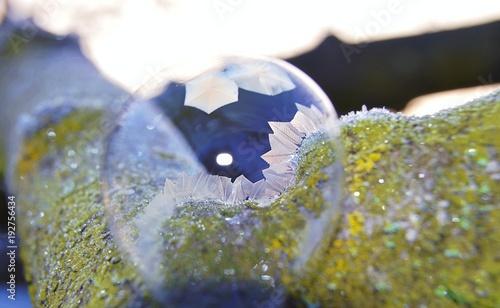 Foto Murales Eisblumen auf einer Seifenblase