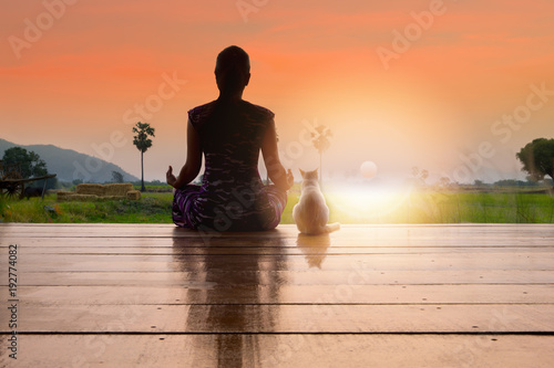 Aluminium School de yoga Silhouette woman doing meditation and yoga with her cat over sunrise in the morning..