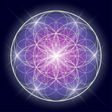 Flower of life or Pattern of Creation. Sacred geometry illustration. - 192775417