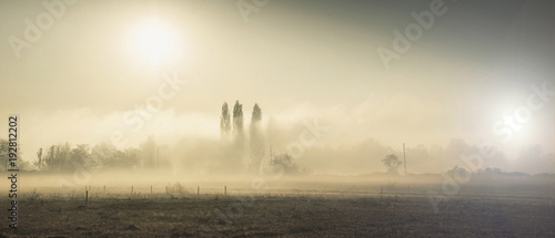 mgła na wsi rano w zimie