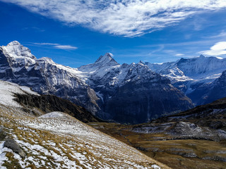 Grindelwald - Alps, Switzerland