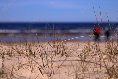 Aluminium Zalm Piaszczysta wydma nadmorska z pojedynczymi wątłymi trawami, część nieostra, w tle nieostre morze, plaża nad brzegiem morza, po które idzie, niewyraźna, grupka ludzi ubranych ciepło, słonecznie
