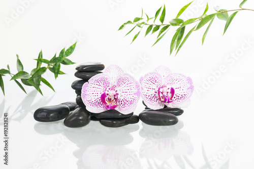 Spa concept with zen stones, orchids and bamboo leaves