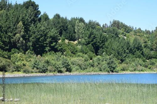 Keuken foto achterwand Olijf lago ranco