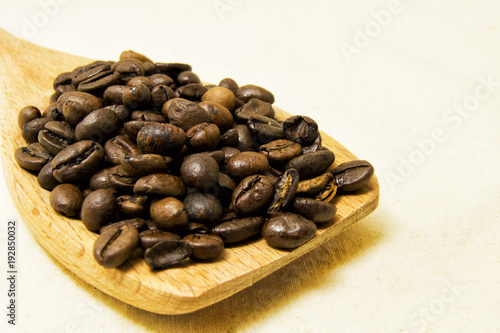 Fotobehang Koffiebonen close up of roasted coffee beans on a wood spoon with white background with space for text.