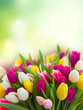bouquet of  pink, purple and white  tulips - 192898674