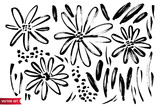 Vector set of ink drawing wild plants, herbs and flowers, monochrome artistic botanical illustration, isolated floral elements, hand drawn illustration. - 192907812