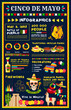 Cinco de Mayo mexican holiday infographic design