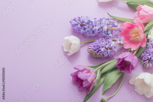 beautiful flowers on paper background