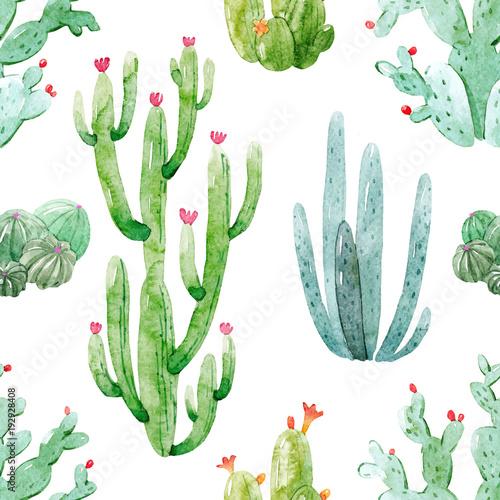 Watercolor cactus vector pattern - 192928408