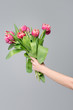Quadro large bouquet of pink tulips in a female hand on a gray background