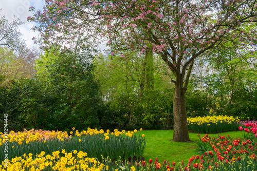 Sticker Spring in garden