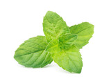 Mint leaves isolated on white background - 192966245